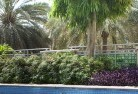 Beltana Tropical landscaping 13